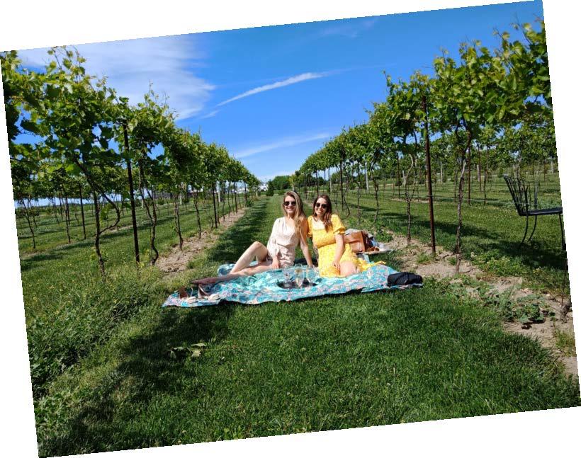 Escape to Lake Huron (Hessenland Inn & Schatz Winery) Image